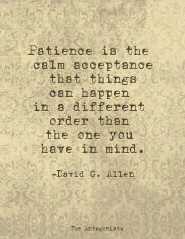 Patience is the calm acceptance that things can happen in a different order than the one you have in mind..