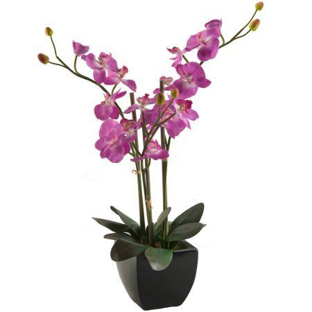 D Silks Purple Phael Orchids in Black Ceramic Planter