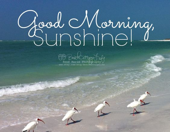 Good Morning Sunshine Quotes: Good Morning Sunshine, Good Morning And Mornings On Pinterest