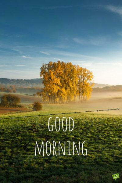 Fresh Inspirational Good Morning Quotes For The Day Good Morning Nature Good Morning Quotes Good Morning Beautiful Images