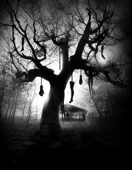 Creepy old tree with body parts hanging from it haunted for Creepy trees for halloween