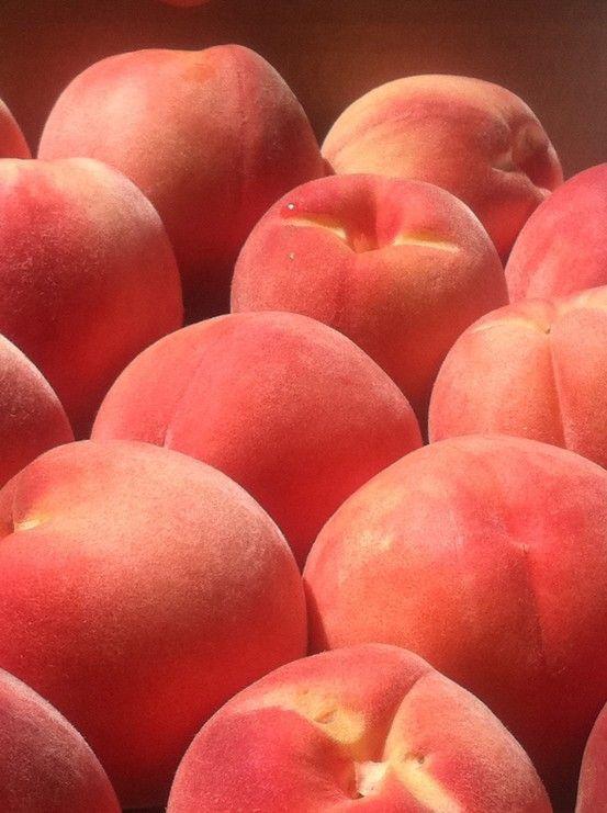 Obozhayu Zapah Persika Esthetique Orange Esthetique Rouge Peach