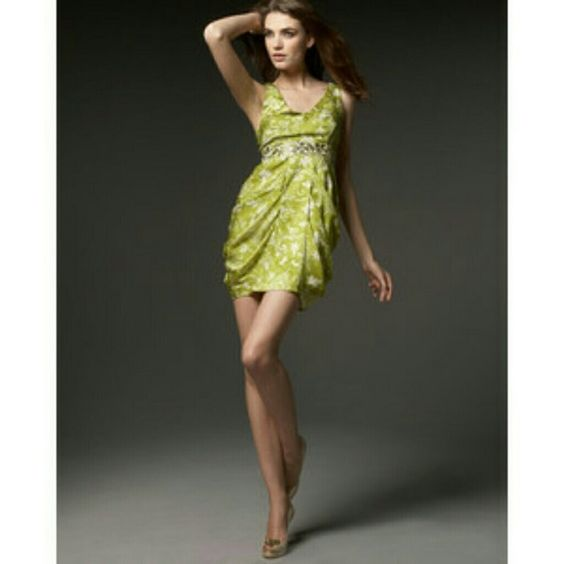 Model shot - gilded garden dress - Leifsdottir for anthro $328