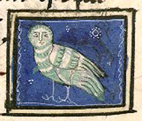 Bibliothèque Nationale de France, lat. 14429, Folio 105v  This is the kind of owl called bubo.: