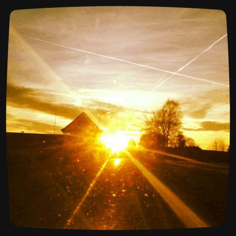 Nice Gif Test immer der Sonne entgegen gif Gastronomie im Netz Pinterest Marketing and Fotografie