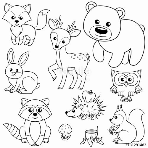 Woodland Animals Coloring Page Lovely