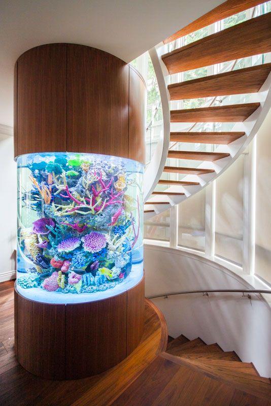 Custom fish tank but no fish future home ideas for Custom fish tanks