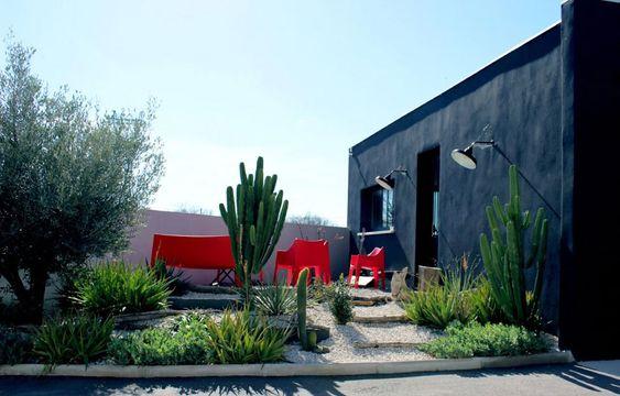 Un giardino di cactus