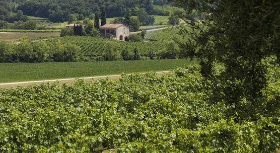 Het Principe Di Lazise - Wellness Hotel & Spa ligt te midden van wijngaarden in de buurt van de oevers van het Gardameer. Het beschikt over 2000 m² aan wellnessfaciliteiten, waaronder binnen- en buitenzwembaden.