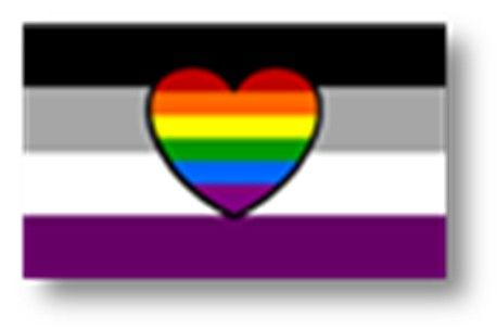 Sapiosexual flag