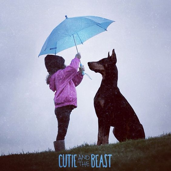 Cutie and the Beast on Instagram