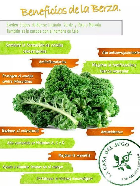 Beneficios de la Berza (kale o col rizada) | SuPer ...
