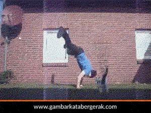 Gambar animasi kucing lucu bergerak, kucing yang malang kelempar :D