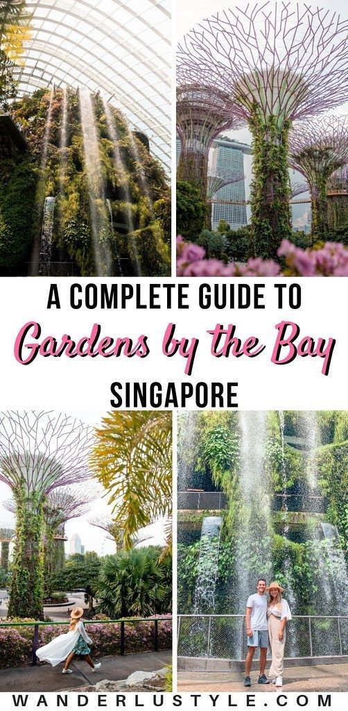 3a6e9113aa17d53293da063aec0b3928 - Gardens By The Bay Food Street