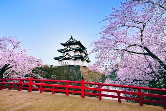 Cơ hội du học Nhật Bản sẽ giúp bạn tìm được ước mơ
