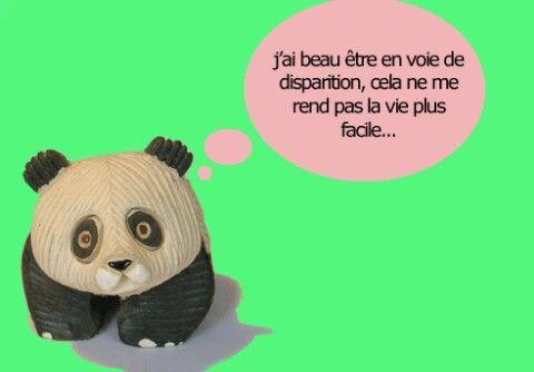Tu as raison mon petit panda!!!