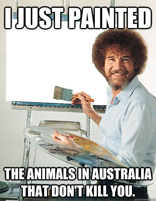 Image result for the only thing worse than aussie internet is nothing meme