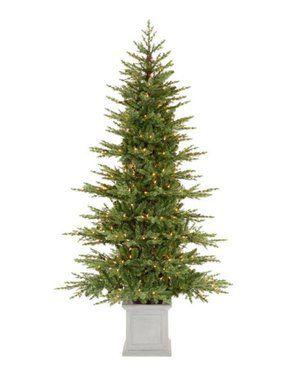 Affordable Christmas Tree Outdoor Christmas Tree Christmas Tree In Urn Potted Christmas Trees