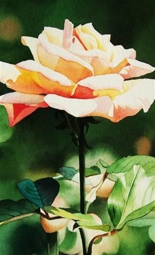 """Sunlit Garden Rose"" - Original Fine Art for Sale - © Jacqueline Gnott"