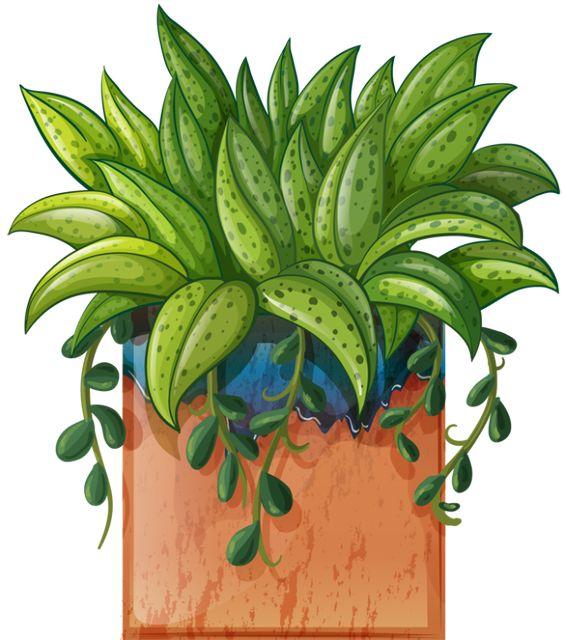 clipart garden plants - photo #20