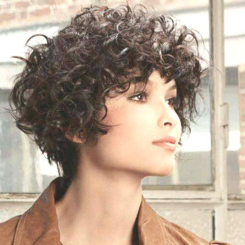 44+ Haircuts for thick curly frizzy hair inspirations
