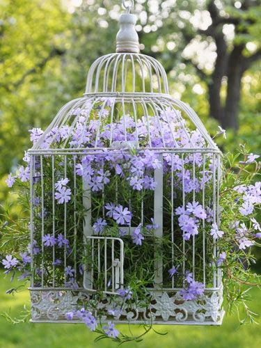 So cute! I like how to color of the birdcage - white, contrasts the color of the flowers - purple. Cool idea to have in the garden or backyard!: