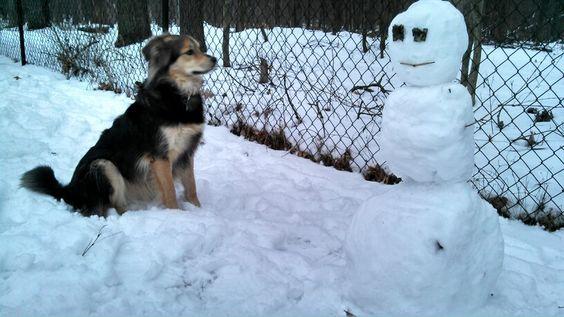 Koi & the snowman