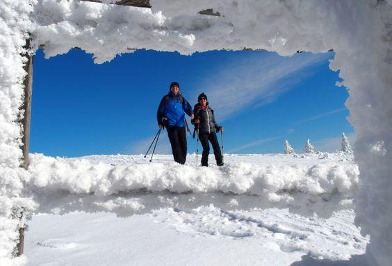 Ein Wintermärchen auf der Reisalpe - Als großartiges Gebiet entpuppen sich die südlich von St. Pölten gelegenen Gutensteiner Alpen. Aber auch Skitourengeher waren zahlreich unterwegs. Zur Ski-Schneeschuhtour: http://www.nachrichten.at/freizeit/freizeit_tipps/tourentipps/Ein-Wintermaerchen-auf-der-Reisalpe;art268,1659865 (Bild: Alois Peham)