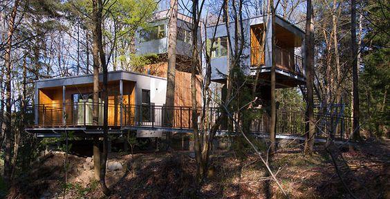 baumraum | Baumhaus Lodge Schrems