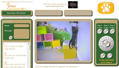 'Play with shelters cats from the computer (16 May 2012).' What a thoroughly innovative idea for increasing adoptions! Kudos to the Kong Co.!