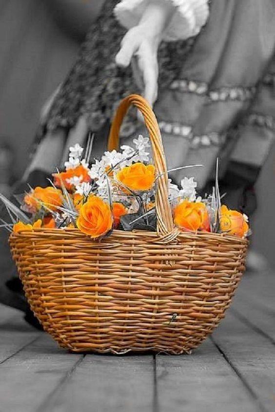 splash of color photography / orange flowers in basket