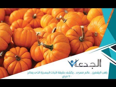 راهب اليقطين عالم مصرى يكشف حقيقة النبات المعجزة الذى يعالج ٧٠ مرض Youtube Health Vegetables Pumpkin