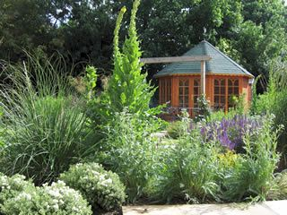 Shade garden gardens and shades on pinterest for Low maintenance shade garden
