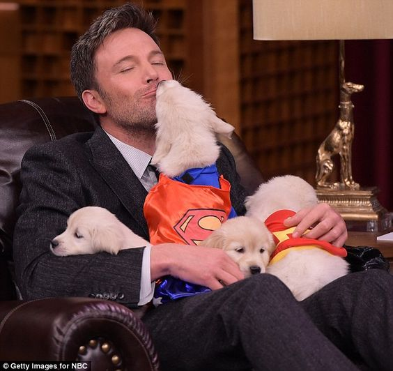 Kiss of condolence: A dog dressed as the Man Of Steel smooched Ben Affleck on The Tonight Show on Thursday as he promoted the dire Batman V Superman: Dawn Of Justice
