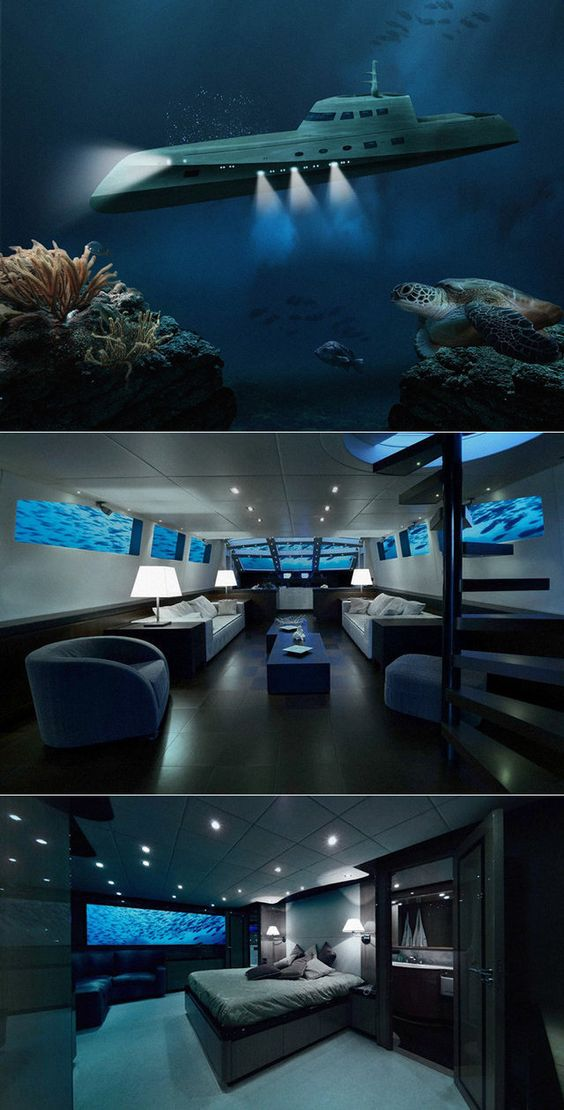 """.... from article """"Boning In The Ocean: $290,000/Night Luxury Submarine"""""""