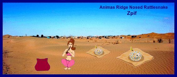 ANIMAS RIDGE-NOSED RATTLESNAKE