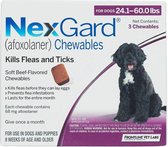 Nexgard For Dogs 4 10 Lbs 11 3 Mg 3 Ct Fleas Ticks Flea Tick