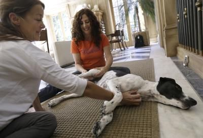 2014-11-27 - Spokesman-Review - Pet massage