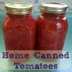 Save Money with Home Canned Tomatoes - Modern Christian Homemaker