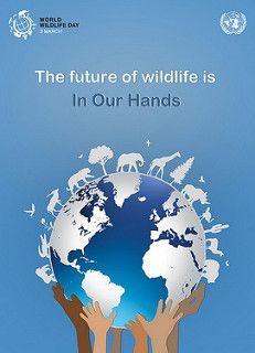 WORLD WILDLIFE DAY 03/03/16 : Take part! Put your hands to good use. Learn more ……...
