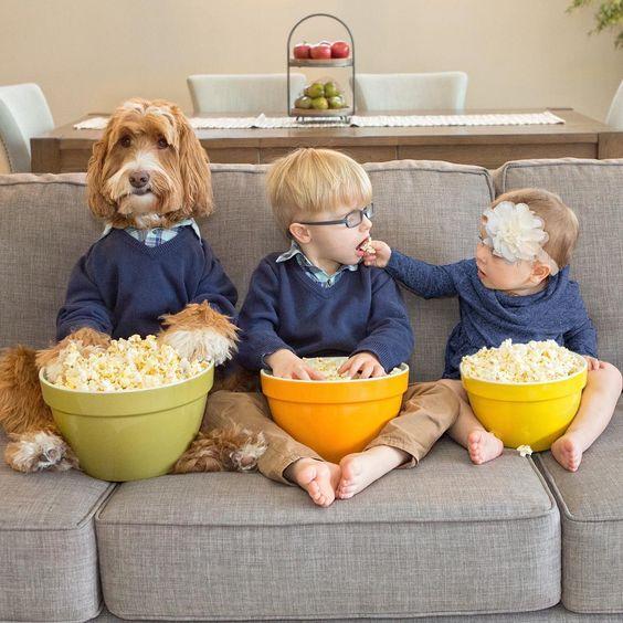 Celebrating National Popcorn Day, or as I call it, National Pupcorn Day. ðŸÂ¿ ðŸÂ¶ðŸÂ¿ðŸ'¦ðŸÂ¼ðŸÂ¿ðŸ'¶ðŸÂ»