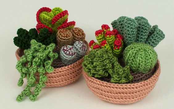 Crochet Succulents Patterns From Planet June via CRAFT:: Crochet Flowers, Crochet Succulents, Succulents Pattern, Crochet Plants, Crocheted Succulent, Crochet Patterns, Knitted Plant, Succulent Collection