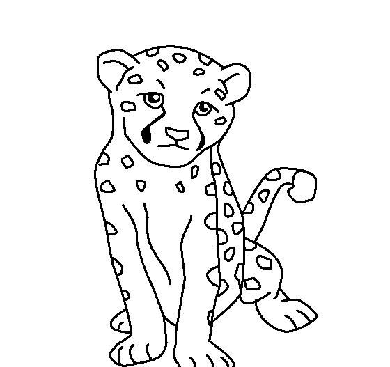 Animal Baby Cheetah Coloring Pages For Kids Coloring Pages For Kids Coloring Pages Animal Coloring Books