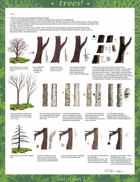 How To Draw Trees A Really Neat Tutorial In 3 Parts Part