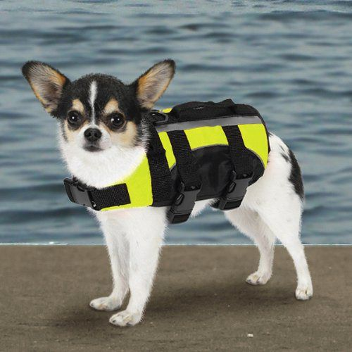 Guardian Gear Aquatic Dog Preserver, X-Small, 10-Inch, Yellow - http://www.thepuppy.org/guardian-gear-aquatic-dog-preserver-x-small-10-inch-yellow/