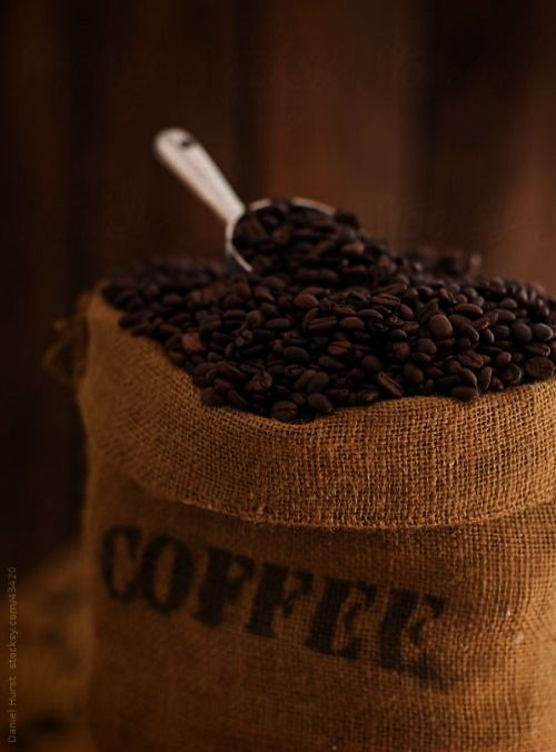 Pin Coffee Beans Png Free Excellent Coffee Meets Bagel Coffee Tasting Coffee Uses