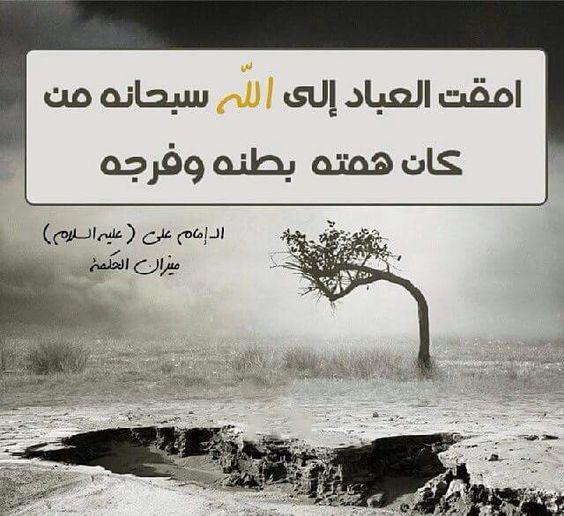 3ad0e0a819d80434a011b9177d161db0 صور حكم واقوال الامام علي(ع)   حكم مصوره للامام علي (ع)   من اروع اقوال الإمام علي ع