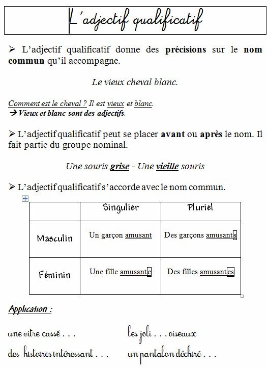 G9 Ce1 Les Adjectifs Qualificatifs Orthographe Ce1 Adjectif Qualificatif Adjectifs