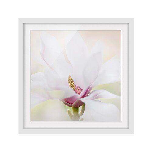 Delicate Magnolia Blossoms Framed Graphic Art Print East Urban Home Size 30cm H X 30cm W Frame Options Matt White Wood Picture Frames Frame Picture Frames
