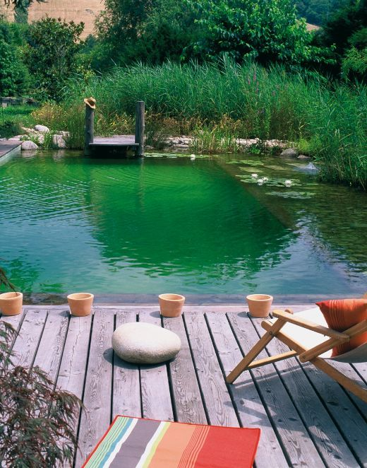 Tout sur la piscine naturelle the natural swimming and for Piscine avec bache epdm